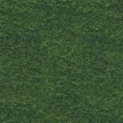 Пробковый пол Corkstyle (Коркстайл) Fantasy Green 915 x 305 x 6 мм (клеевой) предлакировка