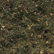 Пробковый пол Corkstyle (Коркстайл) Fantasy Bergheu 915 x 305 x 6 мм (клеевой) предлакировка