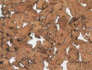 Настенная клеевая пробка Corksribas, DECORK, Condor White (600х300х3 мм) упак. 1,98 м2