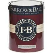 Грунтовка по камню, бетону и штукатурке для наружных работ Farrow & Ball Masonry & Plaster Stabilising Primer 5 л (на 100 кв.м в 1 слой, на водной основе)