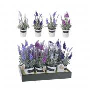 Растение искусственное Koopman International Flora Флора Лаванда 29 см 1 шт