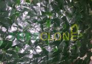 Искусственный газон-коврик широкий темный лист