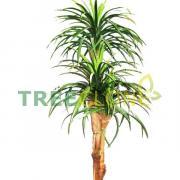 165см Treeclone (Россия) Искусственное дерево Драцена Стелла