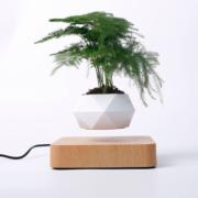 Левитирующий горшок для растений (Светлое дерево)