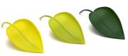 Воронка для полива растений Peleg, Leaflow Peleg Design