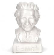 Копилка Einstein Kikkerland