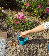 Сажалка Gardena для луковичных растений 03412-20