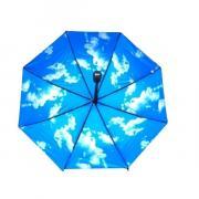 Зонт женский автоматический Pasio 049 (Голубой)