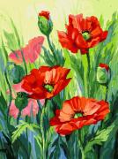 Раскраска по номерам Белоснежка Красные маки 155-AS