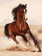 Раскраска по номерам Белоснежка Галоп 107-AS