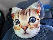 Подушка на подголовник автомобильная - Кошка