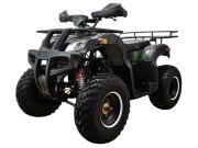 ATV Classic 200 Lux (200 кубов)