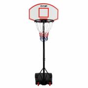 Баскетбольная стойка Evo Jump CD-B003А