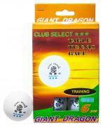 Мячи для настольного тенниса «Club Select***», 6 шт./компл.