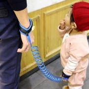 Вожжи для детей Child Anti Lost Strap (Цвет: Голубой)