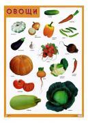 Интерактивный плакат Мозаика-Синтез Овощи
