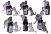 KLIMA Кошки с бутылкой (6 компл.)