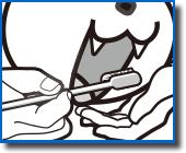 Dentrainer- зубная щетка для кошек