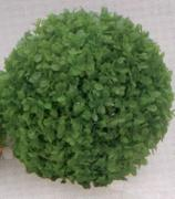 VITALITY Коврик-шар, пластик, зеленый, D=14 см (2847-14)