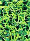 Коврик Hailea из пластиковых растений малый P-11, 15х15 мм
