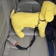 Собака Поводки Регулируется Для машины Безопасность Нейлон Красный Синий Розовый