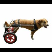 Kruuse Rehab инвалидная коляска для собак L
