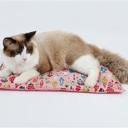 Собаки Коты Кровати Животные Коврики и подушки Однотонный Компактность Сохраняет тепло Мягкий Синий Розовый Для домашних животных