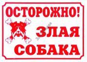 ДАРЭЛЛ 24х17 см табличка Осторожно, злая собака!