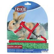 Поводок и шлейка TRIXIE для кроликов, в ассортименте
