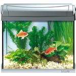 Аквариумный комплекс Tetra AquaArt LED Discover Line Goldfish с LED освещением день / ночь для содержания золотых рыбок 20л