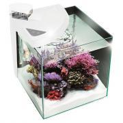 Аквариумный комплекс для рыб Newa More reef NMO30RW, белый, 28 л