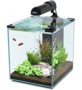 Аквариум для рыб Aquatlantis Nano Cubic 40, черный, 40 л