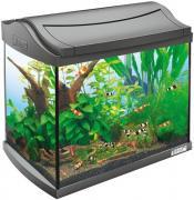 Аквариумный комплекс для рыб Tetra AquaArt LED Tropical, 60 л