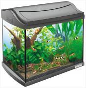Аквариум для рыб, креветок, ракообразных Tetra AquaArt Shrimps Discover Line, серый, 20 л