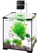 Аквариум Biodesign Q-SCAPE 10, 22х22х25 см, 10 л