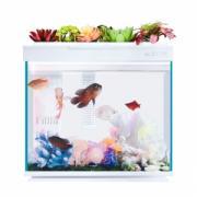 Умный Аквариум Xiaomi AI Smart Modular Fish Tank Amphibious Edition 30L (HF-JHYG006)