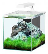 Аквариум для рыб Aquatlantis Nano Cubic 20, белый, 20 л