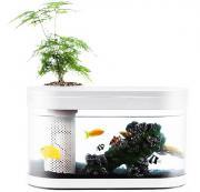 Аква-ферма Xiaomi Descriptive Geometry Amphibious Ecological View Fish Tank (HF-JHYG 001)