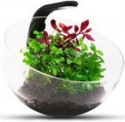 Аквариумный комплекс для растений Aqualighter Wabi Set, бесшовный, 7 л