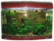 Аквариум для рыб Jebo R 375, с изогнутым стеклом, вишня, 143,4 л