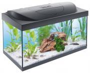 Аквариумный комплекс для рыб, креветок, ракообразных Tetra Starter Line LED, 54 л