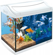 Аквариум Tetra (Тетра) AquaArt LED Goldfish 20л белый