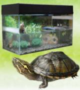 """LUCKY REPTILE Террариум """"Стартовый комплект для водных черепах"""", черный, 80x40x52 см"""
