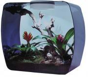 """Lucky Reptile """"Life Box 30"""" инсектариум/аквариум универсальный, сиреневый, 14 л"""