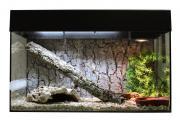 Террариум для рептилий Lucky Reptile Стартовый комплект для Змей, черный, 50x40x28 см