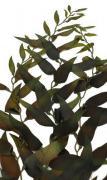 VITALITY Морские водоросли, шелк, 40 см (силикон)