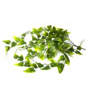 "LUCKY REPTILE Декоративное растение для террариумов ""Philo"""