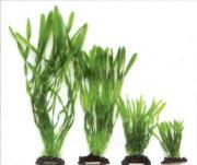 VITALITY Валлиснерия спиральная, пластик, зеленая, 30 см