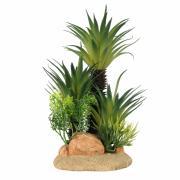 """AQUA DELLA Растение для аквариумов """"Sago Palm M"""""""