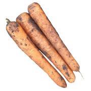 Морковь Грунтовая вес